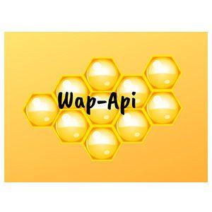 Wap-Api